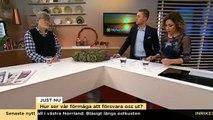 """Professor: """"Sverige är en vidöppen dörr"""" - Nyhetsmorgon (TV4)"""