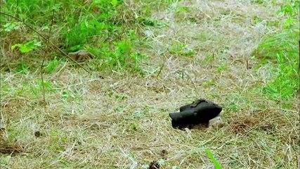 秀才遇到兵 第32集 Xiucai Encountered Soldiers Ep32