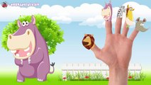 Cartoon Animals Finger Family Collection Cartoon Animals Finger Family Songs Animals Nursery Rhymes