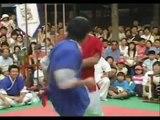 Combat de Taekkyon au Taekyun Battle ~ Taekkyon fight