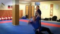 Budo Martial Art`s - Kyusho Jitsu Seminar mit GM P.Bowman