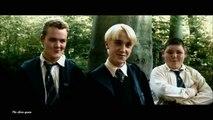 Draco Malfoy ll I'm so sorry