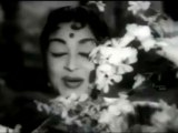 Kuruvi Koottam Pola - MGR, Saroja Devi, Ashokan - Kudumba Thalaivan - Tamil Classic Song