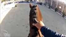 Les chutes à cheval