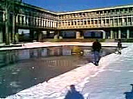 SFU Pond Running at the AQ Reflection Pond