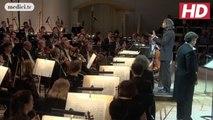 Vladimir Jurowski - Adagio for Strings - Samuel Barber