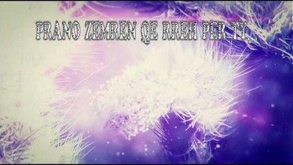 Naza - Degjo Zemren (lyrics)