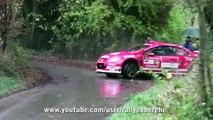 Peugeot 307 WRC Crash Rallye du Condroz Huy 2013