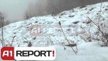 A1 Report - Tre të arratisurit mund të kenë kaluar kufirin, grekët: s'ka shans