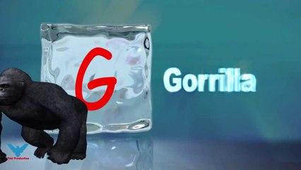 G Alfabeti Shqip shkronja G