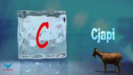 C Alfabeti Shqip shkronja C