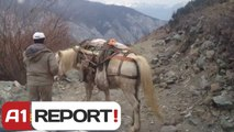 A1 Report - Shtegtim ne Korab, rruga e fshatit
