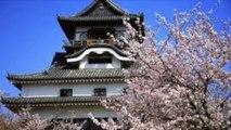 SAKURA 2014【SAKURA IN JAPAN】