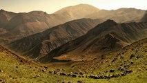 Gheorghe Zamfir | The Lonely Shepherd