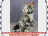 Waldkatze Maine Coon Hauskatze Tigerkatze Katze * 30 cm * Pl?schkatze Pl?schtier
