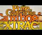 Garcinia Cambogia WARNING: Important Garcinia Cambogia Side Effects Information. Garcinia Cambogia - Garcinia Cambogia for Weight Loss