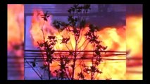 Shandong China Explosion |  ANOTHER Chemical Warehouse Explodes! SOMETHING IS UP!