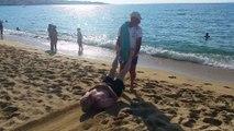 Les co-présidents à la plage