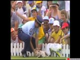 Funniest cricket fielding I've ever seen, huge LOL!!!!! #Funny #Hilarious