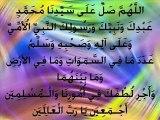 ALLAH KE HUKAM SE  BARGAHE NABWI ME HAAZRI  ( SAHIBZADA MUHAMMAD DAWOOD QADRI RIZVI )