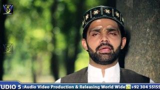 Hafiz Zeeshan Elahi Sialvi