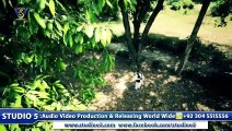 Durood-E-Pak HD Video New Naat [2015] - Hafiz Zeeshan Elahi Sialvi - All Vedio Naat