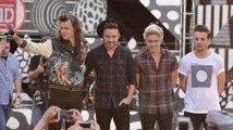 Niall Horan de One Direction y Louis Tomlinson confirman su descanso