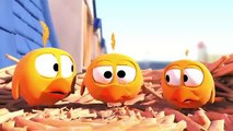 """Pigeons"" - Funny Cute Animation Cartoon"