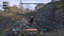 The Elder Scrolls Online: hit him to hard