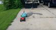 Il promène son bébé avec une voiture radio commandée