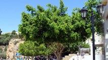 Summer vacation 2011: Agios Nikolaos, Crete, Greece