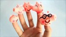 Peppa Pig Lollipops Finger family Nursery Rhyme Song