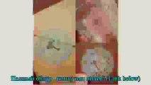 Candife stationery fresh cartoon novelty stic