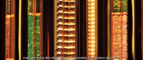 Cartier joaillier des arts - Film de l'exposition et interview de David Lynch