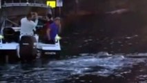 Giant whale caught in plastic bag swims up to fishing boat and asks for help - Whale breaches next