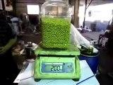 Soy bean oil machine,soy oil machine, soya oil machine, soy bean extruder, soy bean expeller