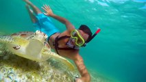 GoPro: Swimming with Sea Turtles in Akumal, Mexico [Zimy Da Kid]
