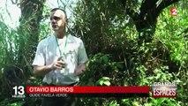 La forêt de Tijuca, un parc naturel autour de Rio