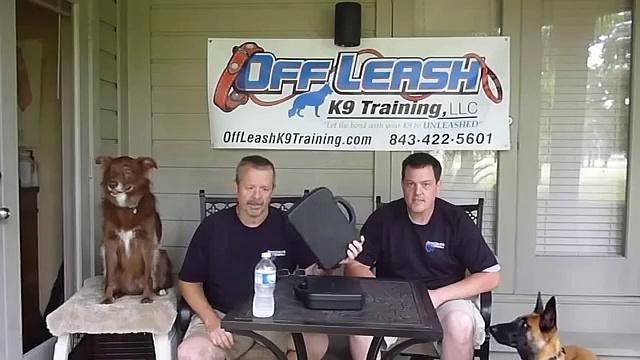 Dog Training with an E-collar, the E-collar challenge