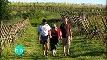 La viticulture biologique (Minute Bio)