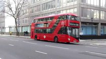 Essay writing services in London   UK BASED   Newessays co uk London Bus Advert