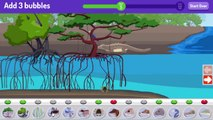 Plum Landing Make A Mangrove Cartoon Animation PBS Kids Game Play Walkthrough