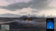 Dolphin Flying - Grand Theft Auto V [PlayStation 4]