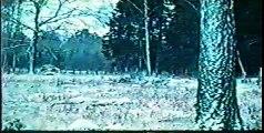 Armefilm - Televapen ( Signalspaning och falsksignalering )