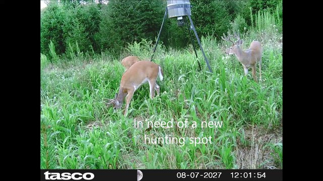 In need of a new hunting spot