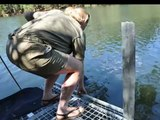 Catching crocodiles on Katherine River