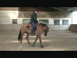 free horse training videos....reining.. circle work jason part 2