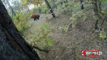 Extreme animal attacks on humans-When Crazy Animals Attack-wild animal attack videos