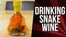 Drinking Snake Wine & Eating A Cobra *Vomit Alert*   Fan Package