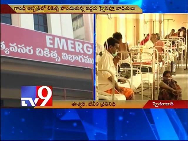 Five swine flu cases reported in Hyderabad